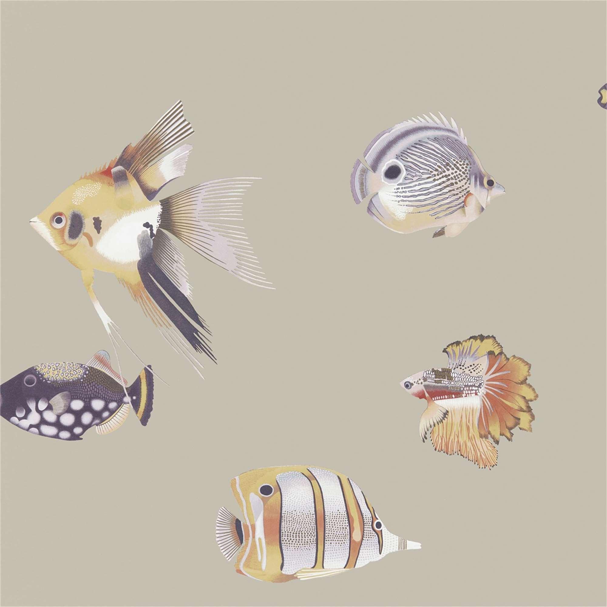 Rotolo carta da parati pesci tropicali tina codazzo home for Rotolo carta parati
