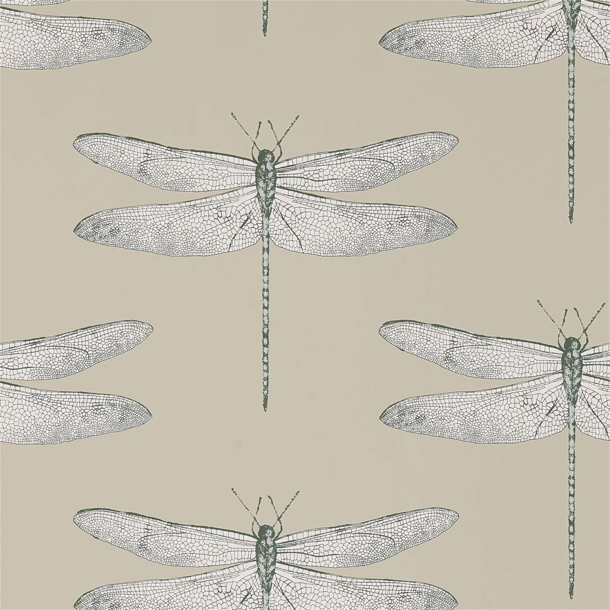 Rotolo carta da parati libellula tina codazzo home for Rotolo carta parati